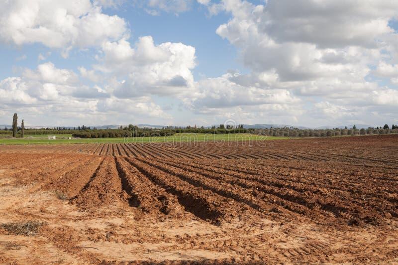 Vale de Hefer, opinião agrícola típica de Emek Hefer imagens de stock royalty free
