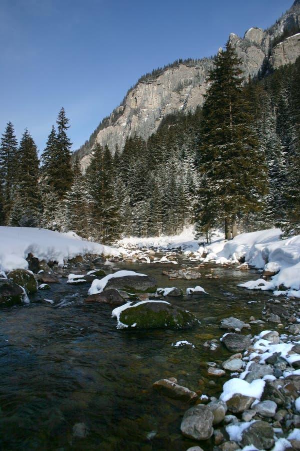 Download Vale de Koscieliska foto de stock. Imagem de montanhas - 529512
