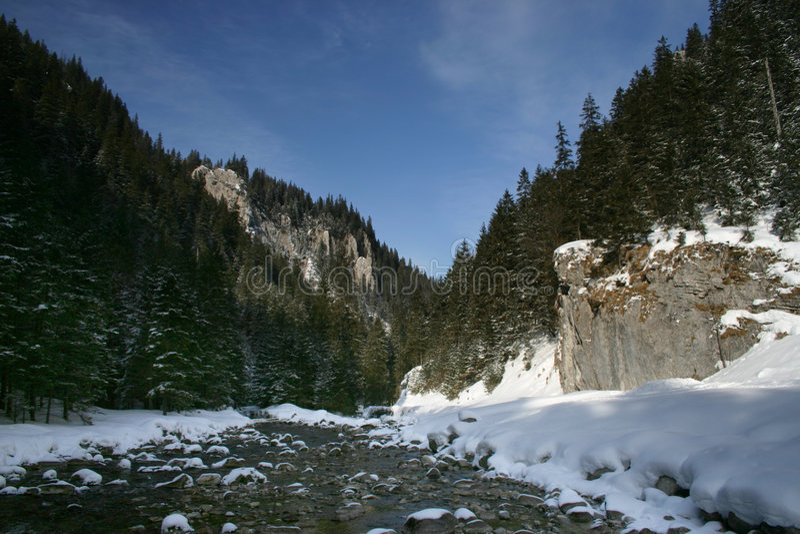 Vale de Koscieliska, Tatra imagens de stock royalty free