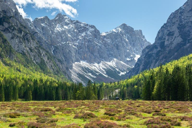 Vale de Krma nos cumes eslovenos foto de stock