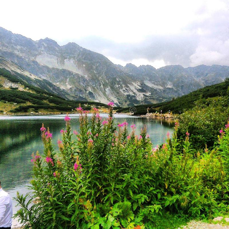 Vale de TatraMountains- das cinco lagoas fotografia de stock royalty free