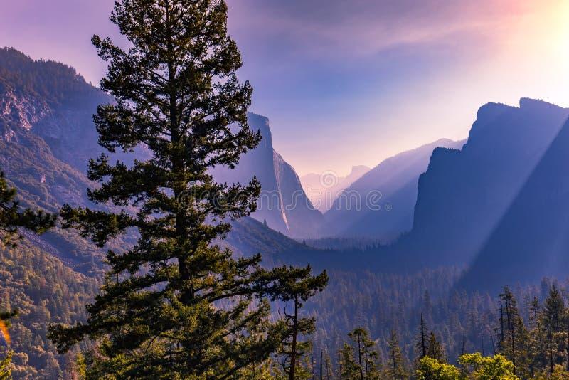 Vale de Yosemite, parque nacional de Yosemite fotografia de stock royalty free