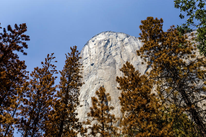 Vale de Yosemite, parque nacional de Yosemite, Califórnia, EUA foto de stock royalty free
