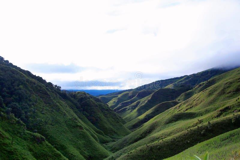 Vale do kou do ½ do ¿ de Dzï Beira dos estados de Nagaland e de Manipur, Índia fotos de stock royalty free
