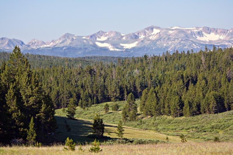 Vale do norte de Colorado fotografia de stock