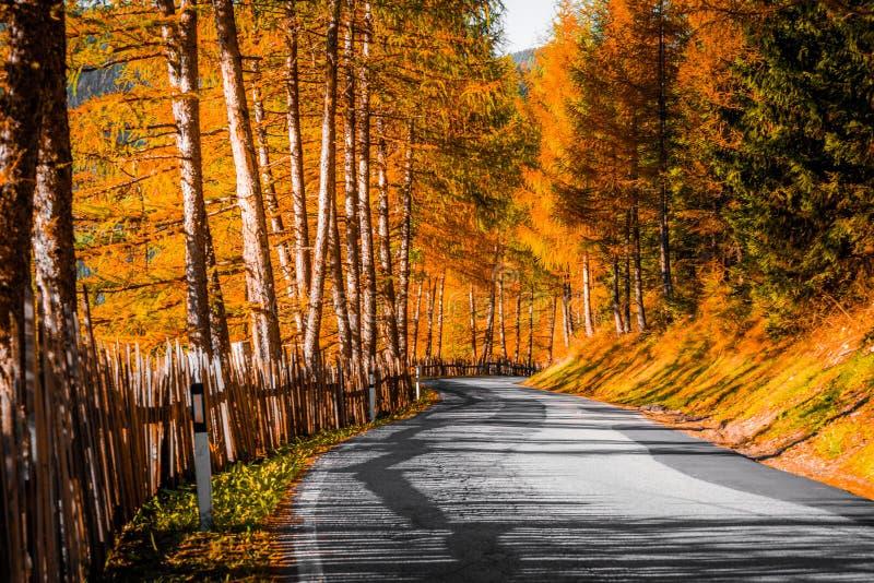 Vale dos cumes das dolomites, Funes, Autumn Road fotografia de stock