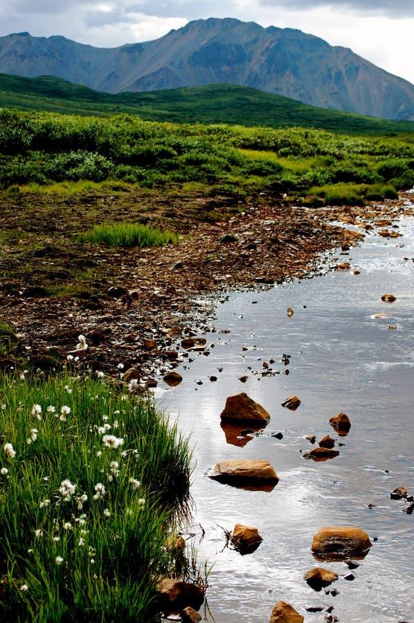 Vale e rio bonitos da montanha foto de stock