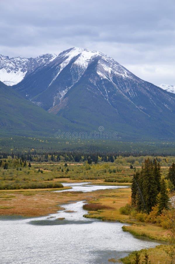Vale em Banff, Canadá imagem de stock royalty free