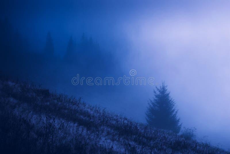 Vale enevoado Carpathian na noite fotografia de stock