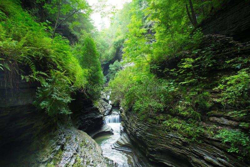 Vale NY de Watkins da cachoeira imagem de stock