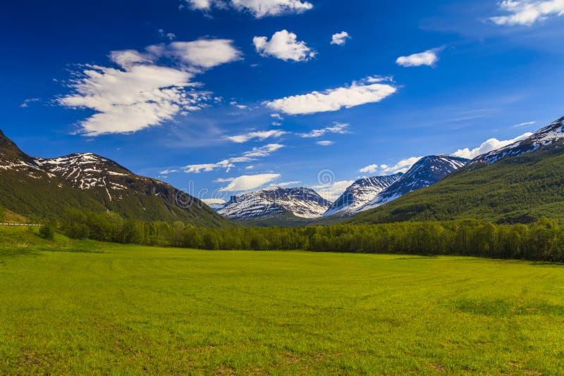 Vale verde bonito no pé das montanhas imagem de stock