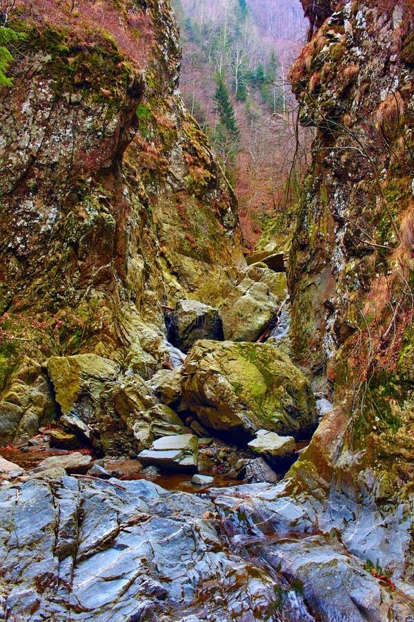 Download Valea Lui Stan Gorge, Romania Stock Image - Image: 37503851