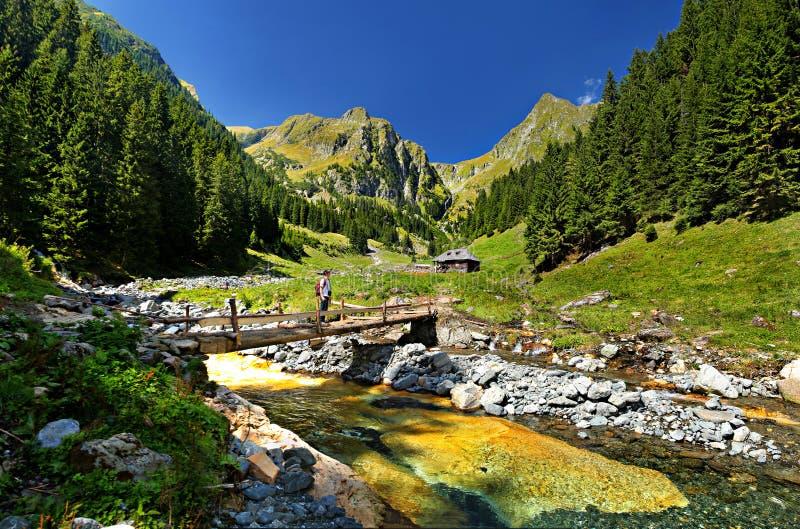 Valea Rea Bad Valley, Fagaras Mountains,Romania. Valea Rea Bad Valley and sheepfold from Valea Rea are located in the southern part of the Făgaraş stock photography