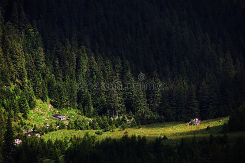 Valea Tunsului,Negoiu山,Transylvanian阿尔卑斯 夏天在日落的山风景 库存照片