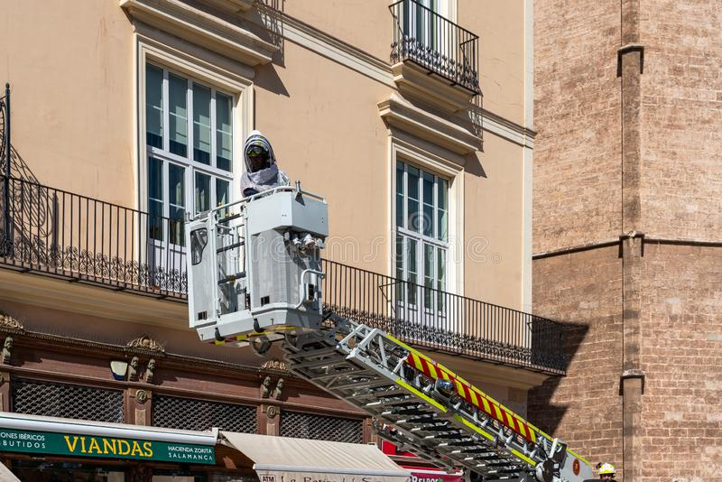 Fireman looking for a dangerous strain of bees next to the Cathedral in Valencia Spain on royalty free stock images