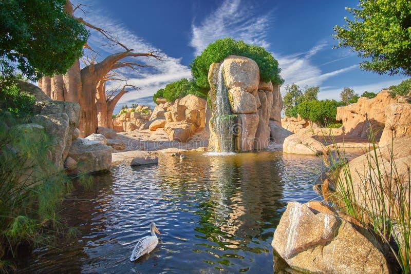 Valencia Zoo - Bio Parc royaltyfri foto