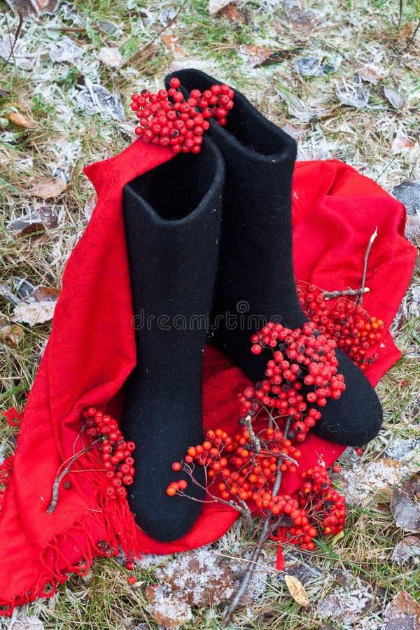 Download Valenki - Gaines De Feutre De Russe Image stock - Image du chaussures, paire: 45352695