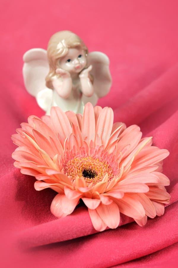 Valentin card i rosa färgfärg royaltyfri foto