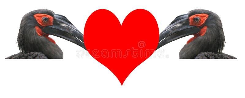Valentin dag, ett kort. royaltyfri foto