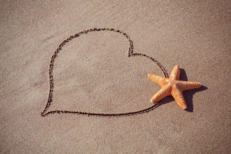 Valentin dagbegrepp på stranden stor orange sjöstjärna och utdragen hjärta på sandtextur fotografering för bildbyråer