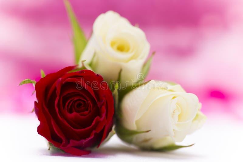 Valentin dnia tło obrazy stock