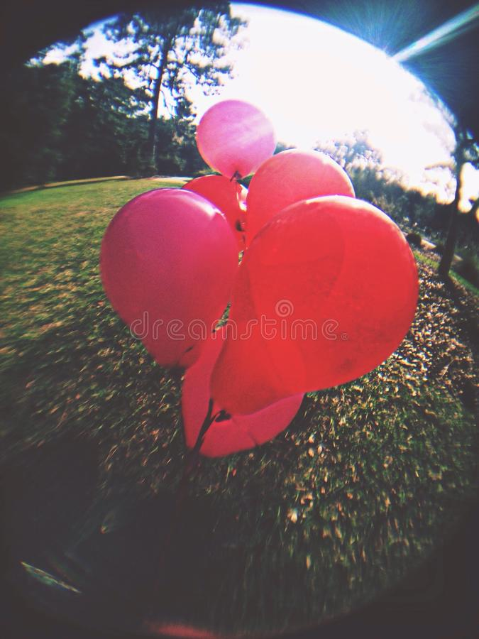valentine stock afbeeldingen