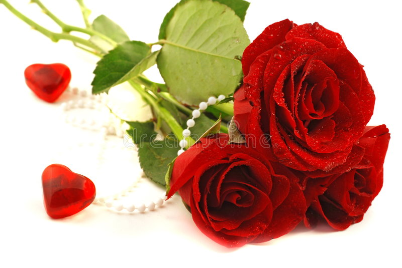 Valentine. Red Valentine Hearts and red rose with pearls royalty free stock photography