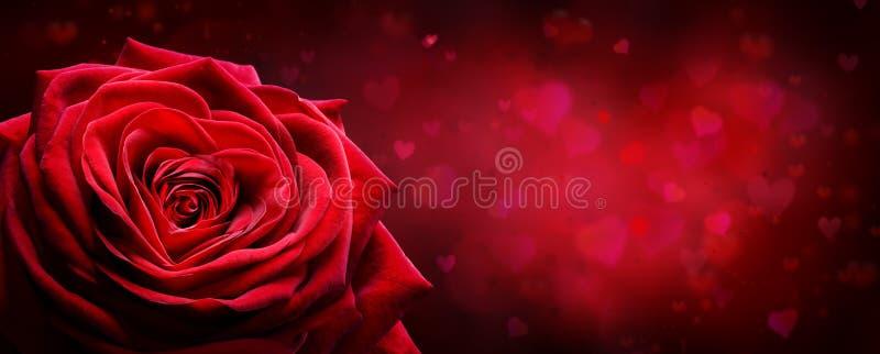 Valentine Card - Rose Shape Heart rossa fotografie stock