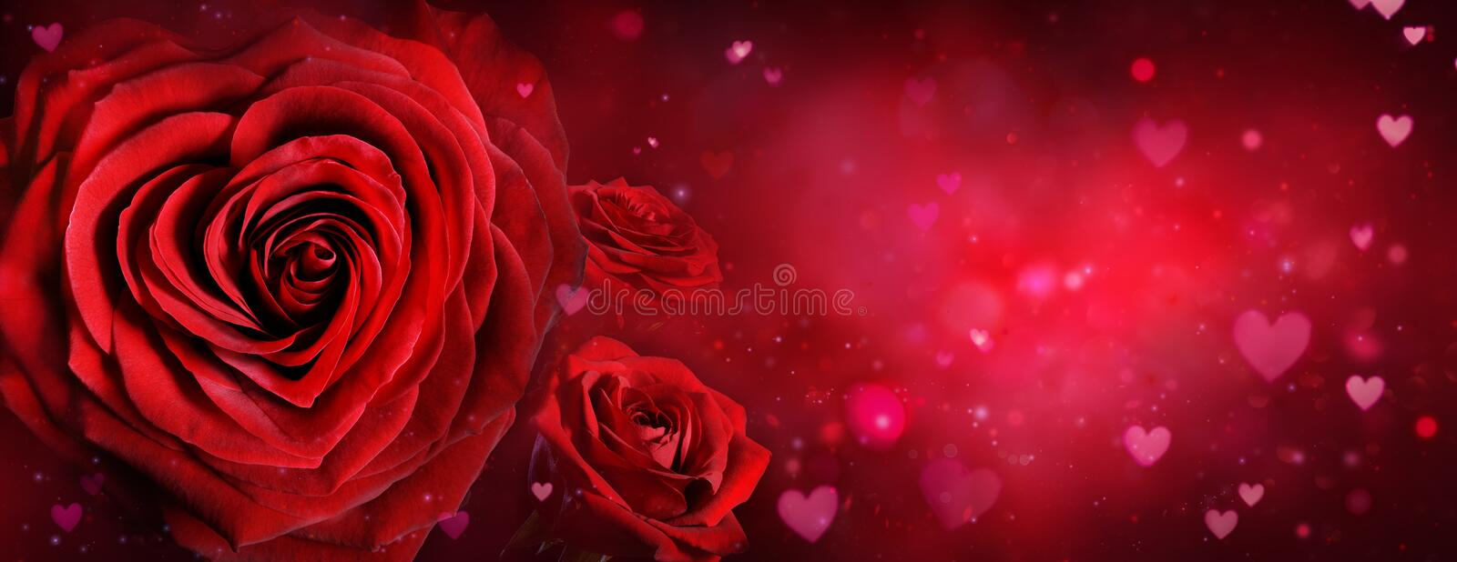 Download Valentine Card - Roses And Hearts Stock Image - Image of closeup, copy: 83705755
