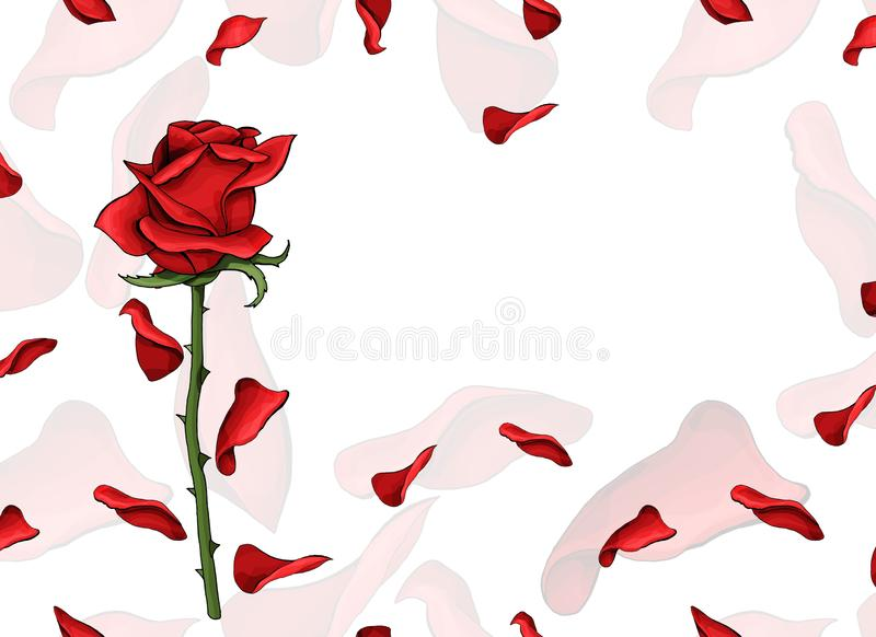 Valentine day love postcard single red rose flower and soft petals template royalty free illustration