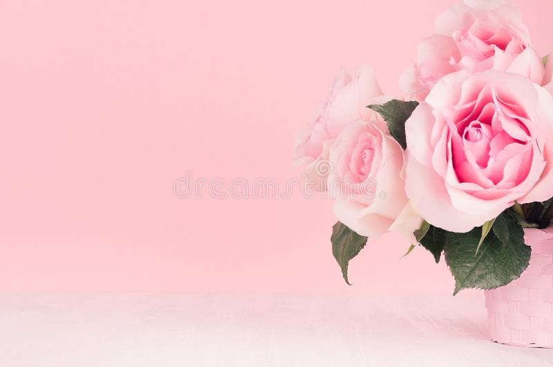 Valentine days decor for home in soft light pastel pink color - romance bouquet of roses on white wood table, copy space, closeup. royalty free stock image
