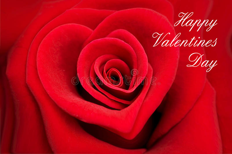 Valentine greeting card, red rose in shape of a heart stock photo