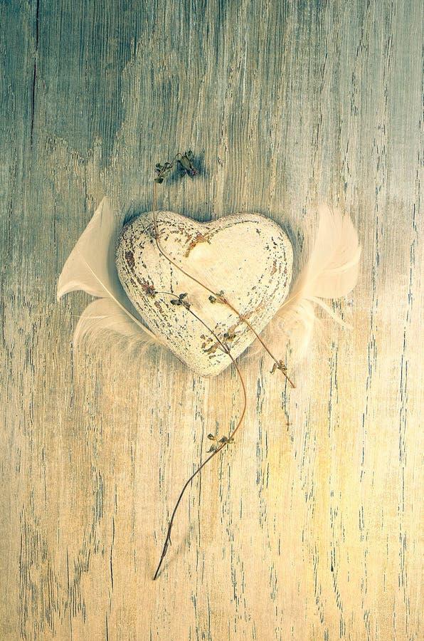 Valentine Heart immagine stock