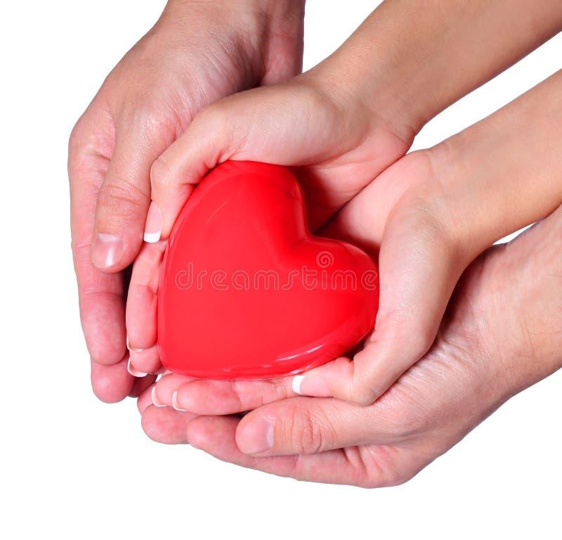 Valentine Heart dans des mains femelles et masculines, d'isolement sur le blanc photographie stock
