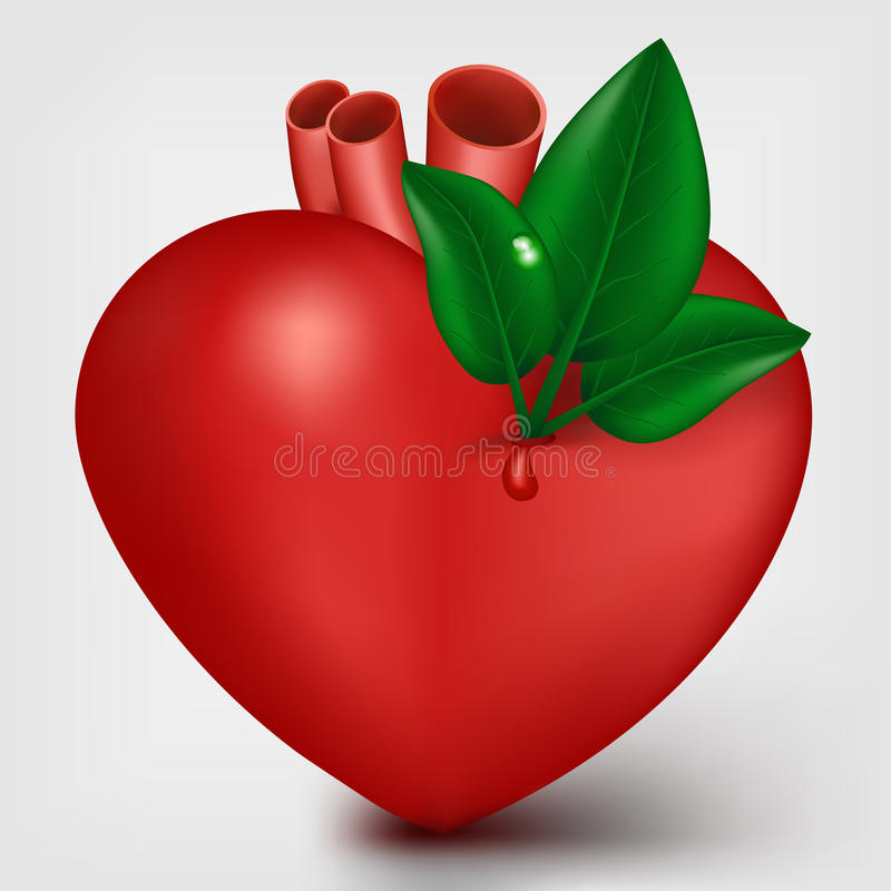 Valentine heart with green leafs royalty free illustration