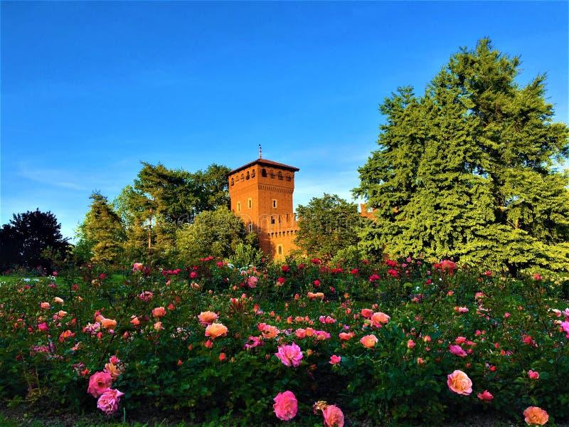 Valentine Park, mittelalterliches Schloss, Frühling, Rosen und Märchen in Turin-Stadt, Italien lizenzfreies stockfoto