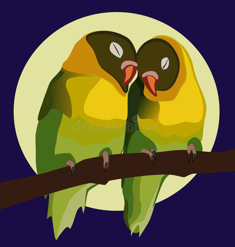 Valentine Parrots fotografie stock libere da diritti