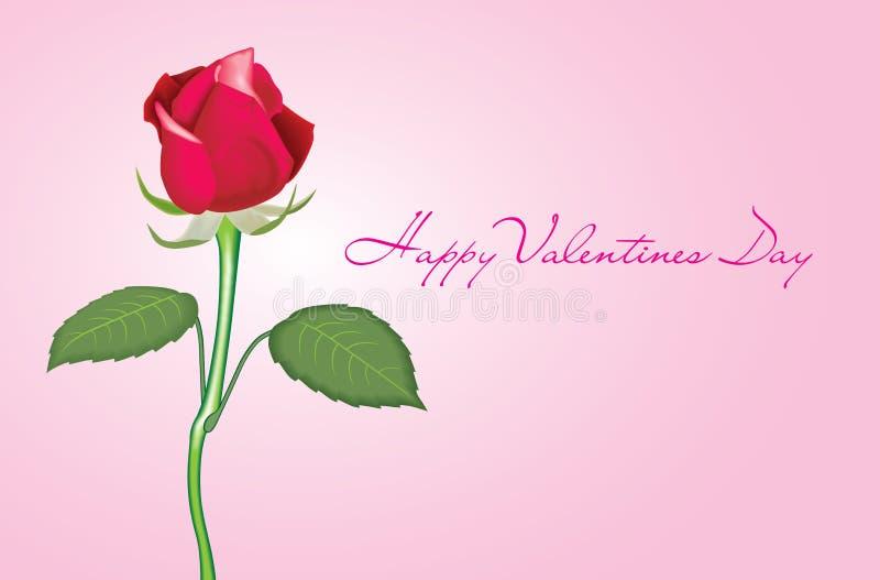 Valentine Rose photographie stock