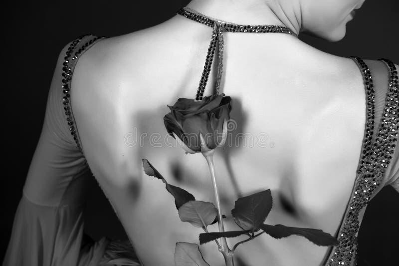 Valentine rose behind female back in dress stock image