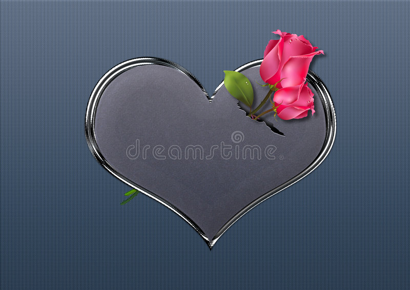 Valentine roses royalty free stock images