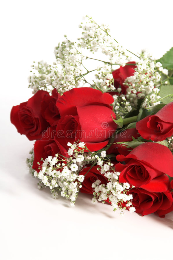 Valentine Roses. A Dozen red Valentine's Day Roses with baby's breath