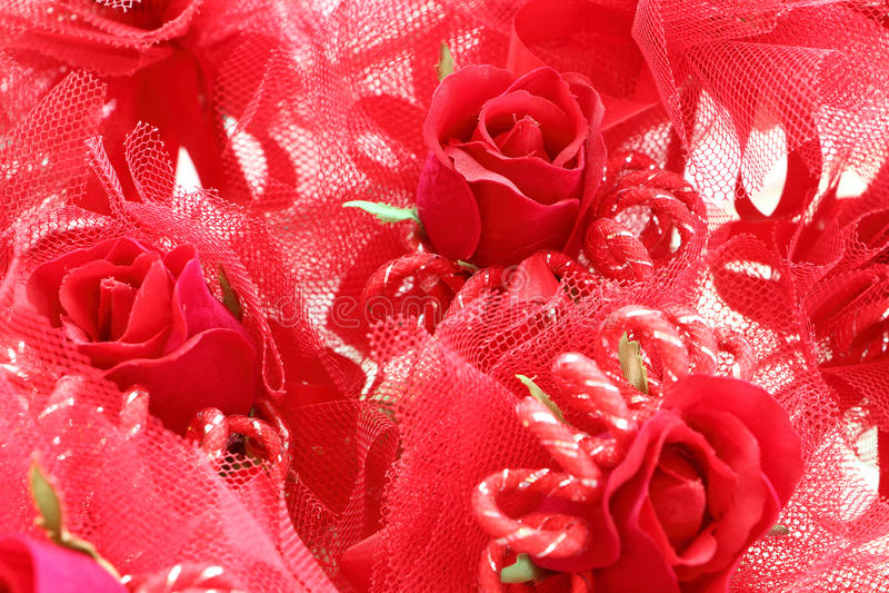 Valentine Roses photos libres de droits