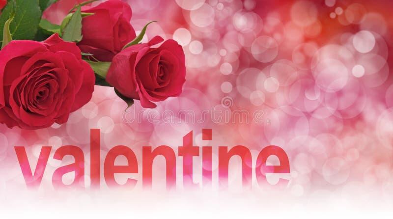 Valentine Roses Header imagem de stock royalty free