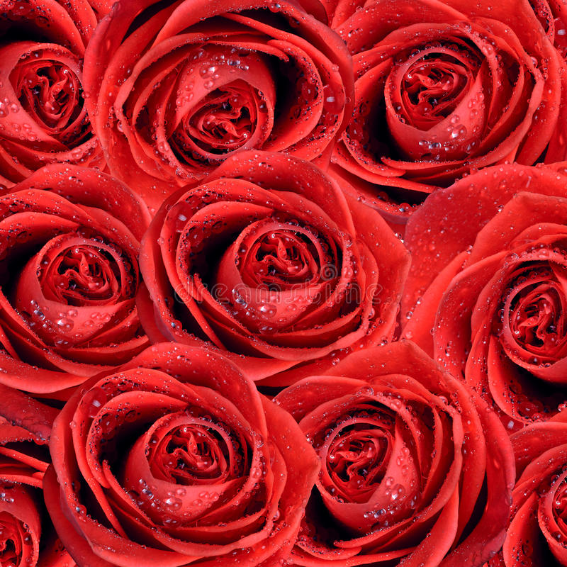 Free Valentine S Background Stock Photo - 22409560