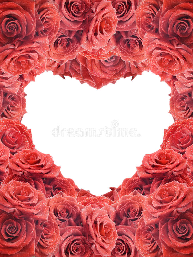 Valentine's card with red roses stock images