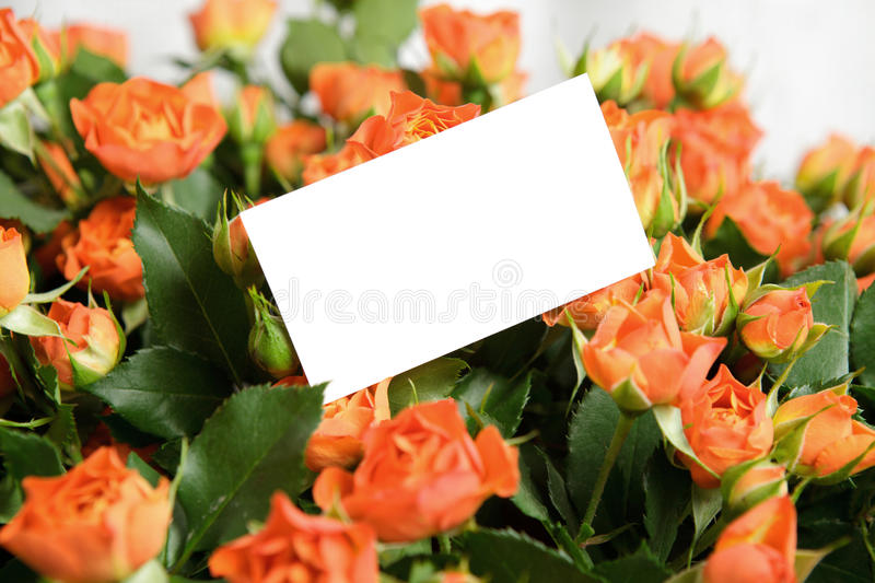 Download Valentine's Day Royalty Free Stock Photos - Image: 17841838