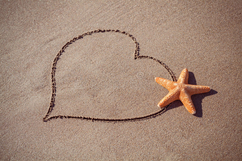 Valentine's day concept at beach. big orange starfish and drawn heart on sand texture. Valentine's day concept at beach. big orange starfish and drawn heart on stock image