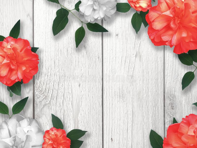 Valentine`s Day Holiday Red and White Roses Floral Border. Over Whitewashed Wood Background, Copy Space vector illustration