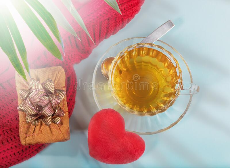 Valentine`s day morning tea. Cup of tea, plush heart, gift box on light blue backdrop and palm leaves shadows overlay. Valentine`s day morning tea. Glass royalty free stock photography