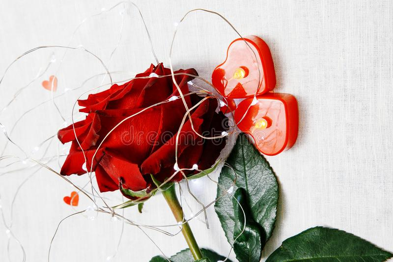 Valentine`s Day. Red rose on the table and in the weight. heart and wine plugs. world in weight. royalty free stock photos